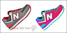 Raster to Vector Image Conversion for Fashion Gadgets Image
